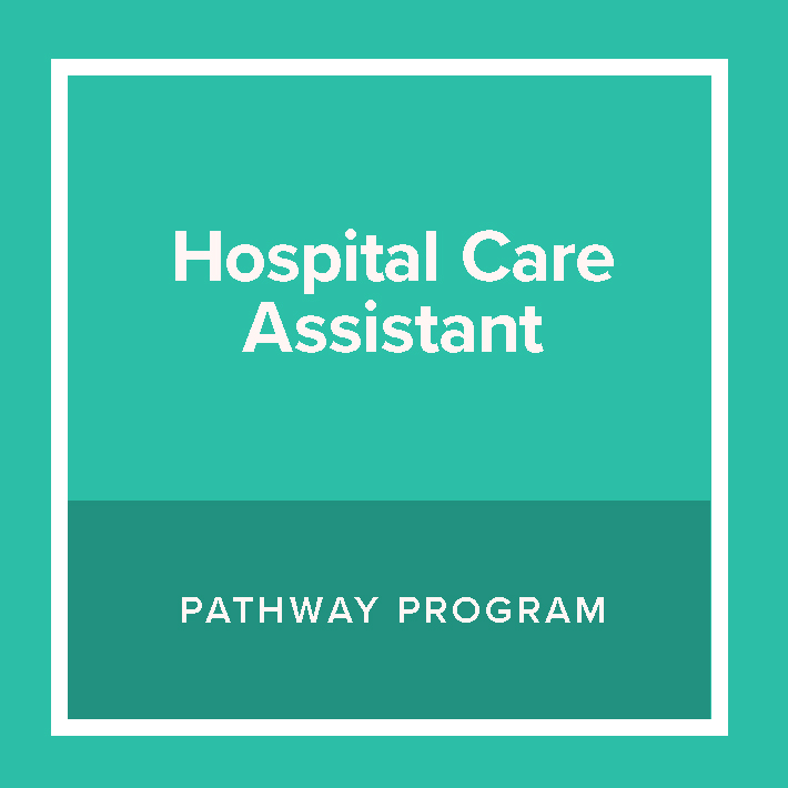 Hospital Care Assistant